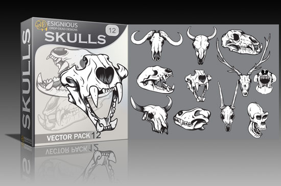 skull121 Latest additions on Designious.com!