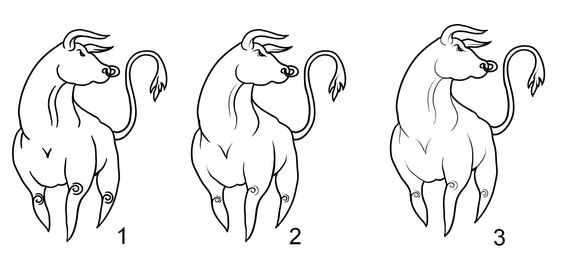 bull sketch Quick Tip: Free hand drawing brushes setup for Illustrator