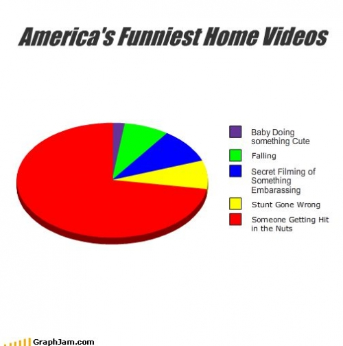 song-chart-memes-americas-funniest-video2