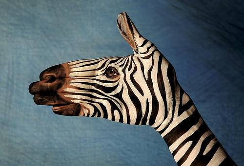 2062023394 f281a17817 Breath Taking Body Painting Art