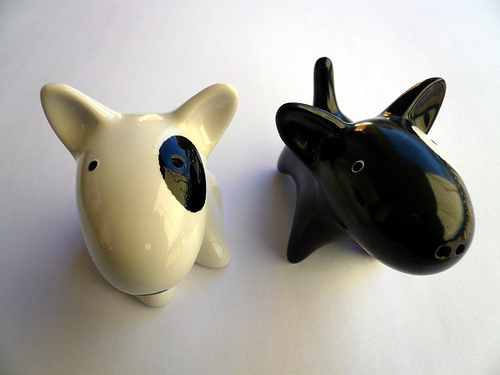 spotted dogs salt and pepper shaker design 35+ Creative and Funny Salt and Pepper Shakers