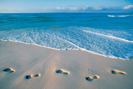 foot steps on beach 5 Valuable Tips to Convert Your Website Visitors into Buyers
