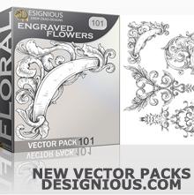 vector pack designious THUMB
