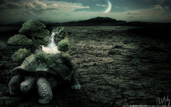 Photo manipulation turtle Chad Gersky Artist of the Week   Graphic Designer Chad Gersky