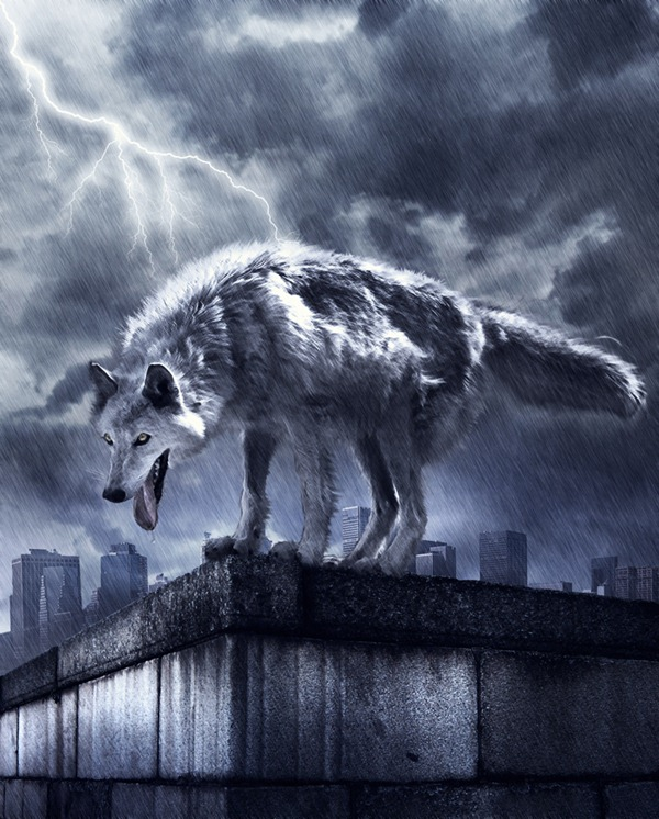 wolf photo manipulation photoshop tutorial Photoshop Tutorials Roundup   January 2012