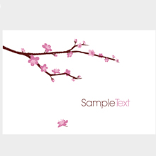 blossomed-cherry-branch-220