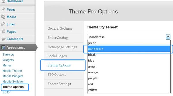 How to customize WordPress theme freelance portfolio 4 How to Customize a WordPress Theme for Your Freelance Portfolio