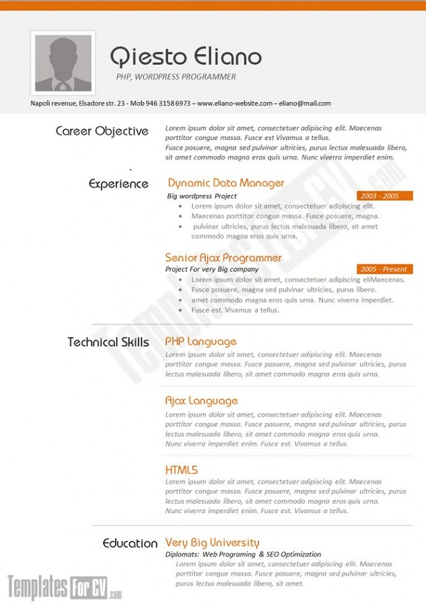 Cv Template It | Format For Cv Resume