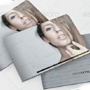 10-Best-Brochure-Templates-for-Designers-5