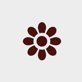 pixel77-free-vector-geometric-flower-0828-600x600