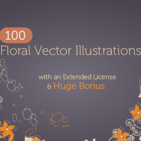 floral vector illustrations