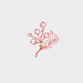 pixel77-free-vector-branch-0990-600x600